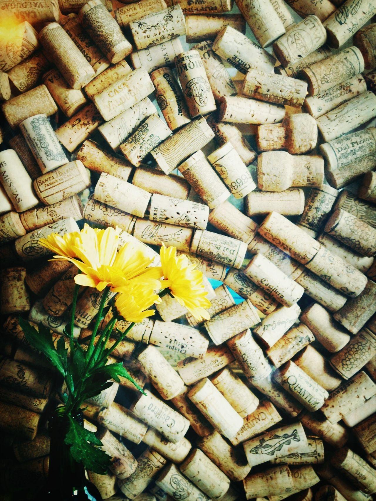 Beautiful stock photos of wine, Abundance, Blooming, Brazil, Day