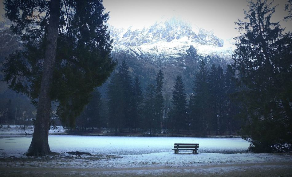 Tree Nature Lake No People Water Scenics Beauty In Nature Tranquility Cold Temperature Winter Outdoors Snow Day Sky Chamonix_france Best Shots EyeEm Midi-Pyrenees Winter Chamonix-Mont-Blanc Explorers Beauty In Nature Snow ❄ Glacier Ice Aguilledumidi The Explorer - 2016 Eyeem Awards