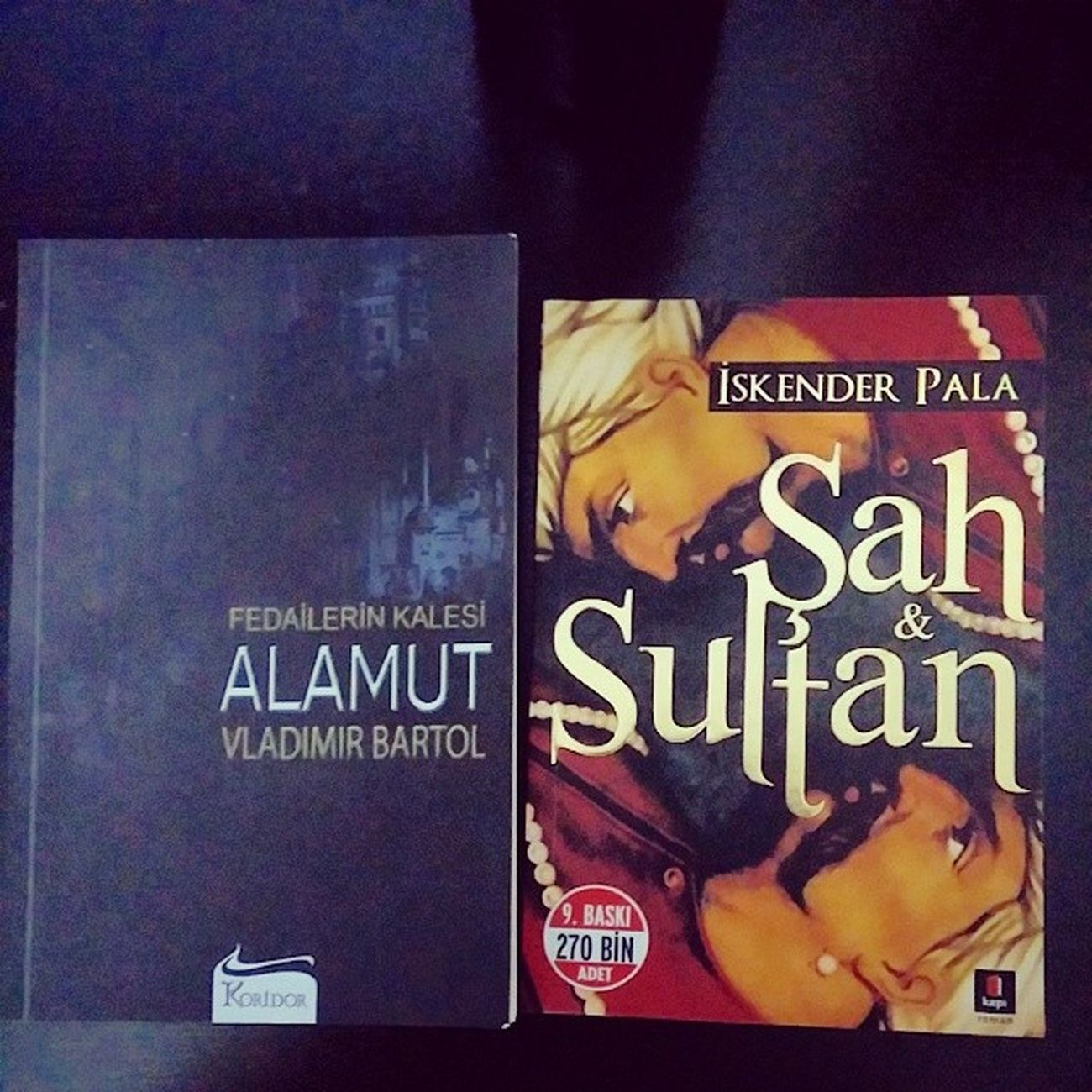 Bu iki kitabi ayni anda alinca kitapcida çalışan çocuk bile sasirdi Alamut ile başlayalım bakalım. Alamut Vladimirbartol Sahvesultan Iskenderpala
