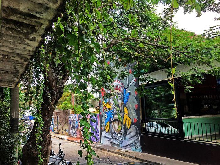 Vila Madalena em São Paulo/Brazil Tree Outdoors Tranquility Saopaulocity Vilamadalena Saopaulowalk SaoPaulo-Brazil Saopaulo_originals Saopaulotudodebom Saopaulopormeucelular Brazil Graffiti Art