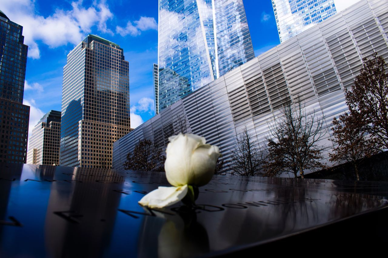 9/11 memorial, with a white rose 9/11 Memorial White Rose Respect The Photojournalist - 2017 EyeEm Awards EyeEm Selects