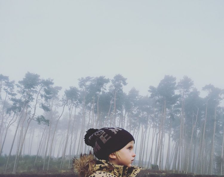 Happiness Bobble Hat  Misty Misty Forest Pine Tree Pines Forest