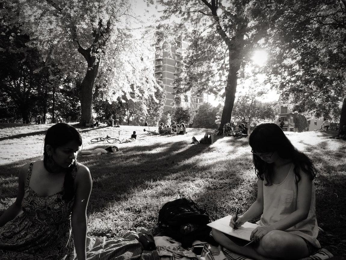 Summer Dreaming. Making Art. Parc Lafontaine Le Plateau Mont-royal Make Art Montréal