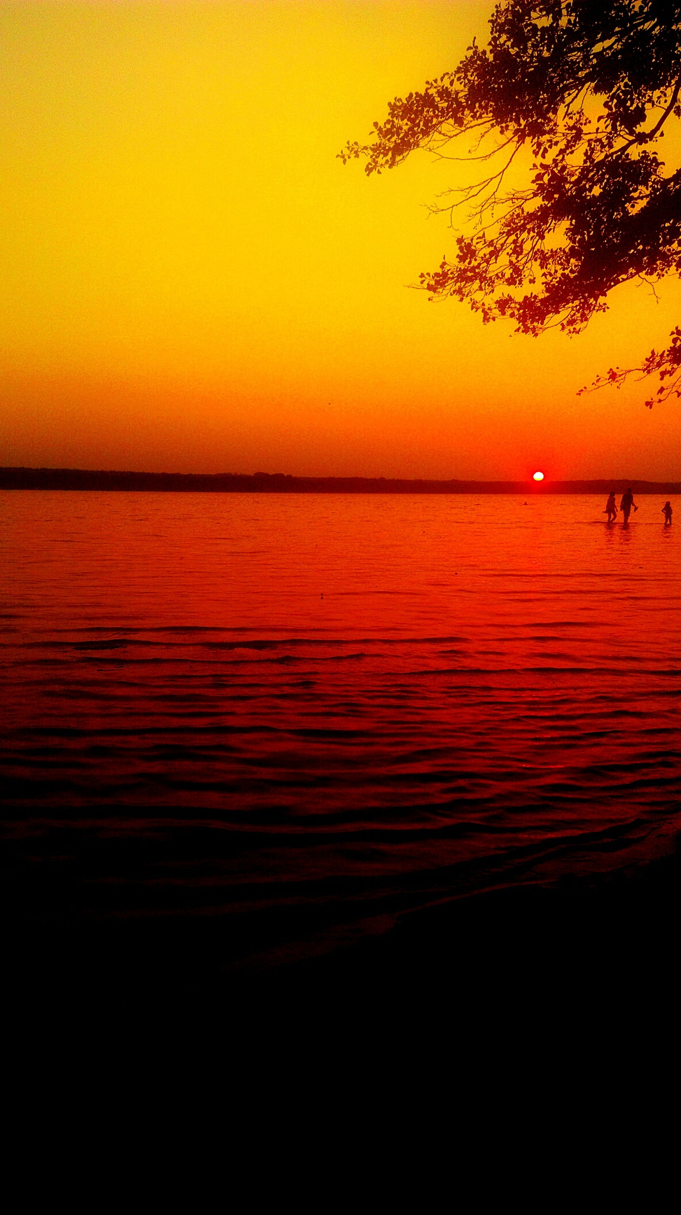 sunset, water, scenics, tranquil scene, tranquility, sea, beauty in nature, tree, silhouette, orange color, idyllic, horizon over water, majestic, vibrant color, sun, nature, calm, atmosphere, dramatic sky, remote, atmospheric mood, sky, romantic sky, outdoors, seascape, no people, shore, ocean, non-urban scene, red