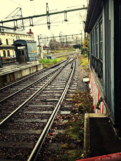 MaxArt Taking Photos Railway Colors Of Autumn