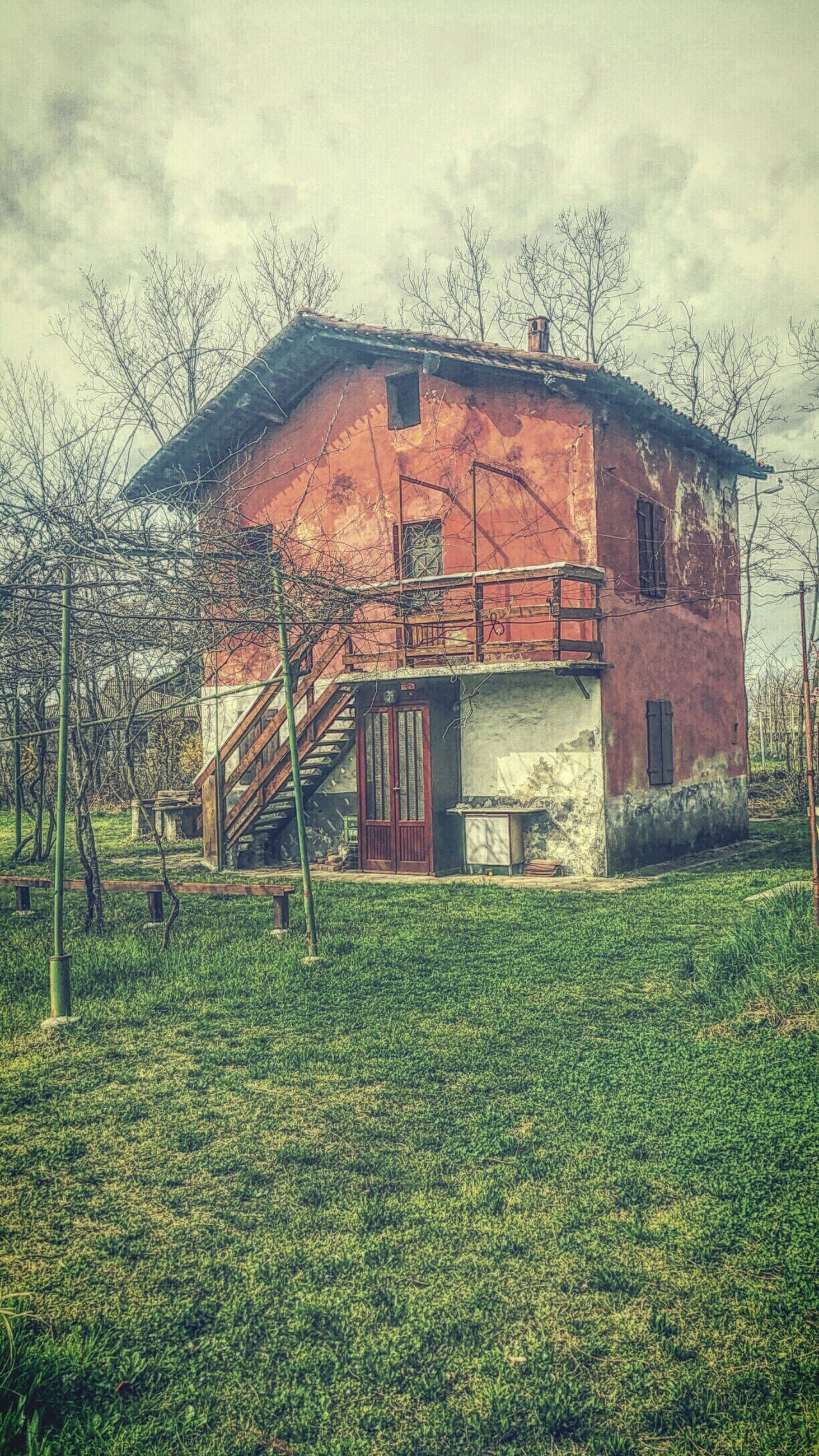 architecture, building exterior, built structure, grass, sky, house, tree, bare tree, residential structure, field, residential building, day, cloud - sky, outdoors, plant, window, no people, growth, abandoned, nature