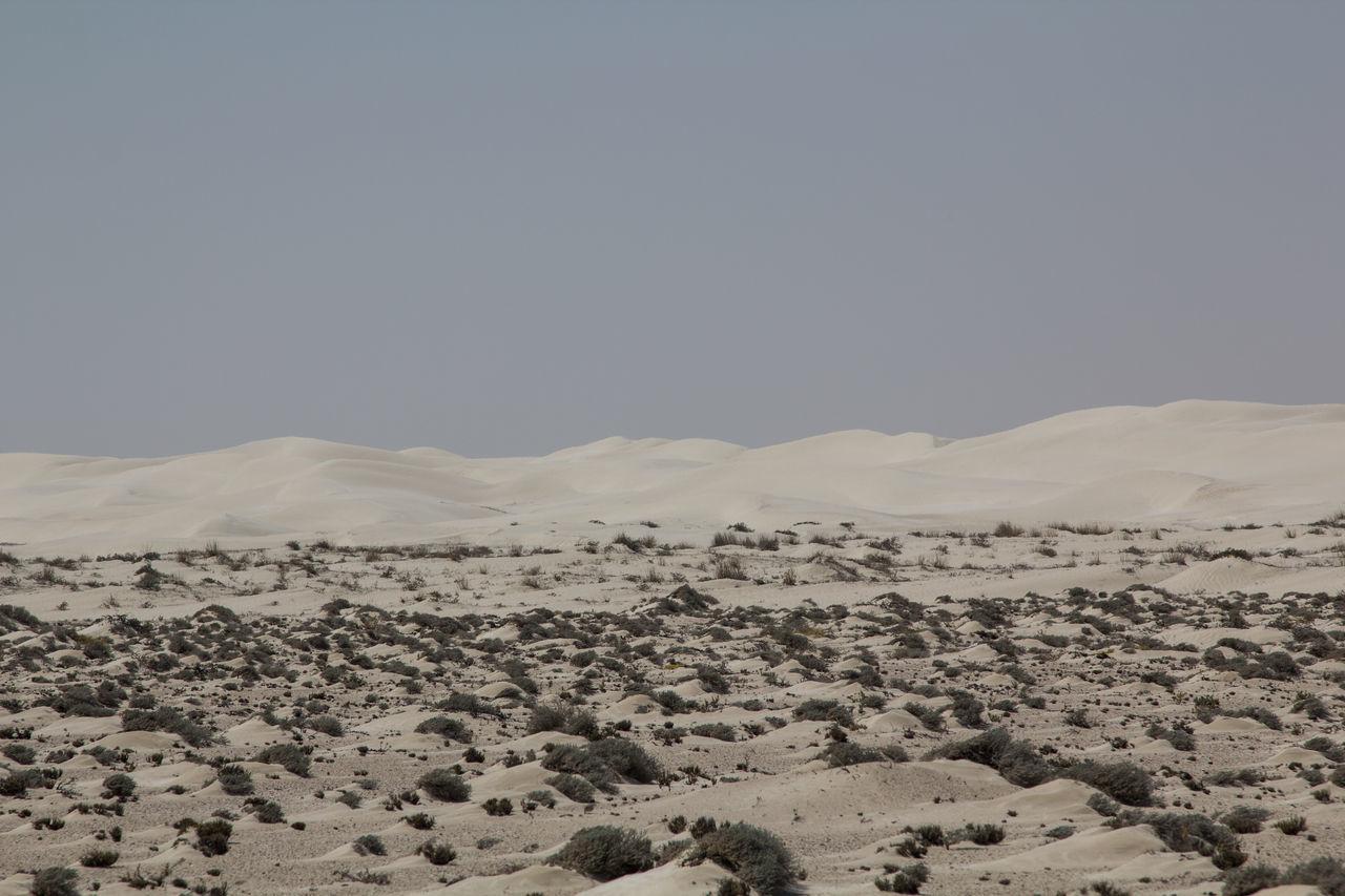 Oman Offroad: The Sugar dunes near al Duqm Adventure Arid Arid Climate Arid Landscape Desert Desert Explore Extreme Terrain Landscape Middle East Nature No People Non-urban Scene Offroad Offroad Adventure Oman Oman_photography Outdoors Remote Sand Sand Dune Sky Tranquil Scene Tranquility White