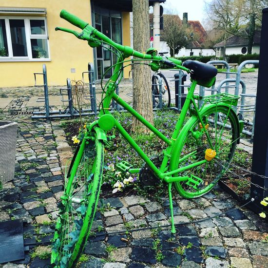 Greenbike, Gröbenzell, Showcase April, Frühling Hello World