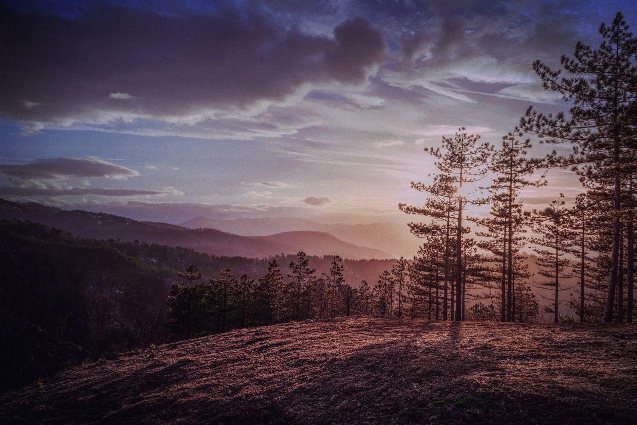 Sunset Nature Sky Beauty In Nature Tree Outdoors No People Star - Space Galaxy Astronomy Zeiss 55 F/1.8 Sony Purple Springtime Spring Day Tranquility Tranquil Scene Nature Tree Landscape Dramatic Sky Mountain Mountain Range The Week Of Eyeem