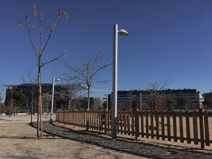 Park Farola Faroladedia Farolas De Luz  parque Fence Bare Tree Clear Sky Outdoors No People Day Sky Tree Parque  Valla Fences