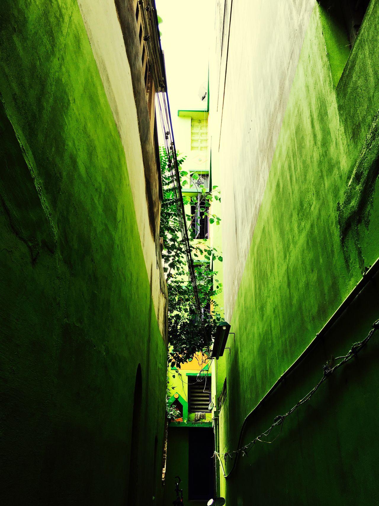 Colorfulhouses Green Color Blocked Path Mobilephotography Travel Photography Southindia, Madurai Lowangleshot Eyemphotography
