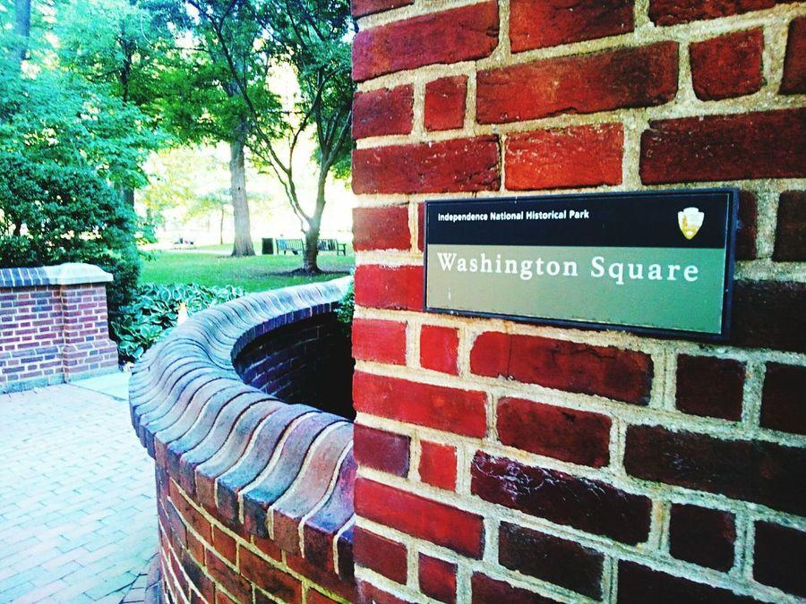 Park - Man Made Space Tree Footpath Outdoors Day Park Hedge Colorful Brick Bricks Brick Wall