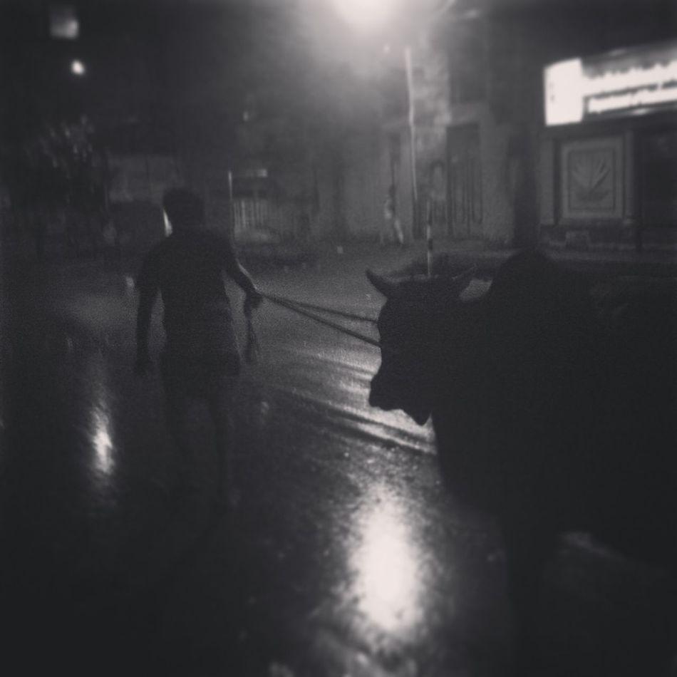 Happy Eidul Adha EyeEm Bangladesh Dhakagraam Rainy Days Black & White Streetphotography Streetphoto_bw Nightphotography Stree Photography Monochrome