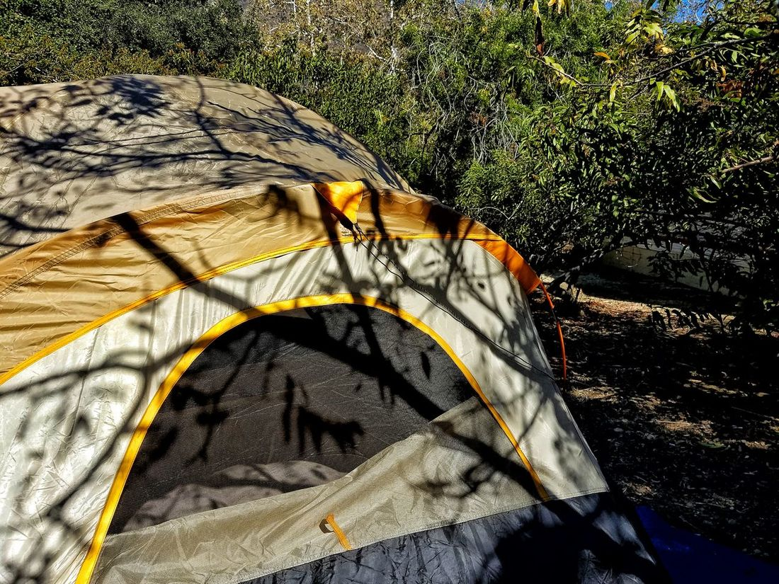 I'm a survivor Camping First Time Camp Out In A Tent Yellow Tent Grey Green Outdoors Trees Shadow And Light Sunlight Sunlight And Shadow On The Ground Camping World CampLife Family Vacation Outdoor Photography Leo Carrillo Beach