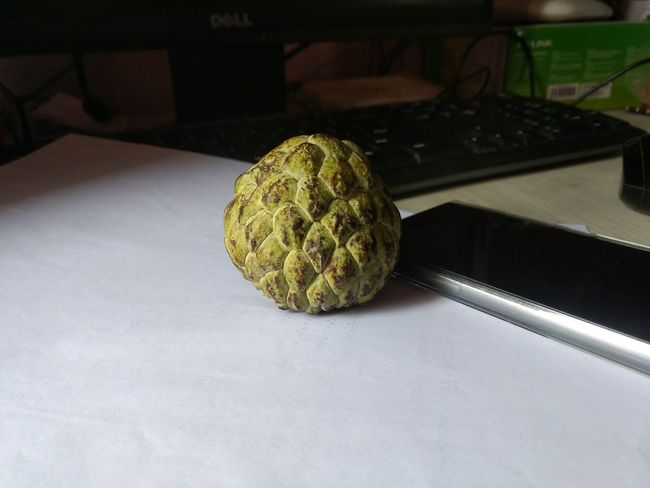 Custard Apple Fruits ♡ Moto G4 Plus No People Indoors  Close-up Table DSLR Effect Healthy Eating Fruits Lover Day Horizontal Smartphone Photography Smartphone PC Dell Monitor Keyboard