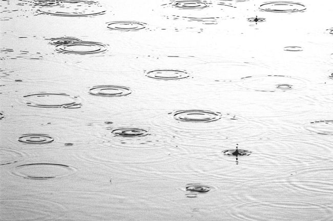 Rain Drops for the Bnw_friday_eyeemchallenge Bw_collection Fortheloveofblackandwhite Blackandwhite Monochrome Black And White