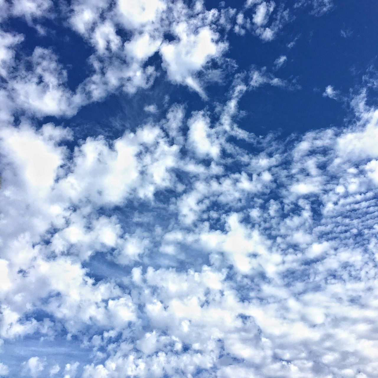 low angle view, sky, cloud - sky, backgrounds, beauty in nature, nature, blue, cloudscape, sky only, full frame, scenics, day, no people, tranquility, outdoors, tranquil scene