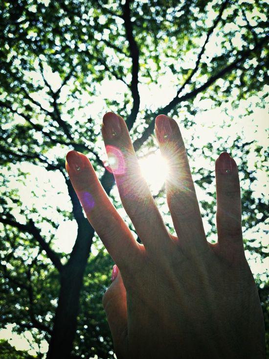 Sunshine Hand Catching A Sun