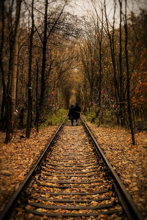 "Ukraine, ""Tunnel of Love"". Railway track in the trees converge to a point on the horizon. stretching into the distance Beauty In Nature Couple Day Distance Full Length Nature Outdoors People Real People Rear View Romantic Scenics Seclusion The Way Forward Tree Two Way The Secret Spaces"