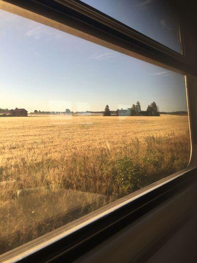 Commuting Autumn Colors