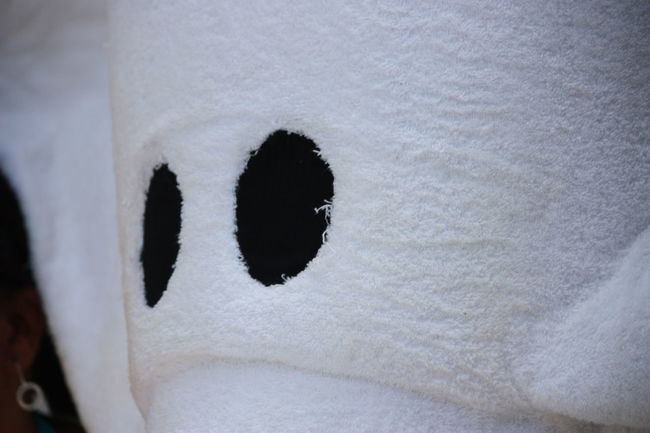Carnival Close-up Cruise Cruising Relaxation Soft Towel Animal Towels W