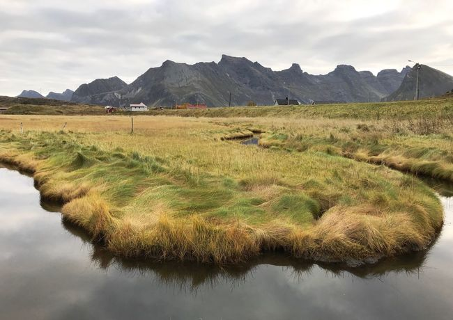 Mountain Nature Sky Grass Tranquil Scene Beauty In Nature Lofoten Lofoten Islands Norway Mountain Range Cloud - Sky Outdoors Day Tranquility Water No People