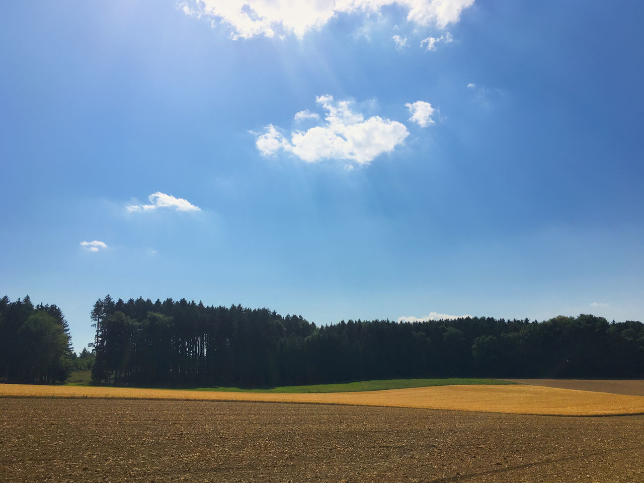 Feld und Wald 34 Agriculture Beauty In Nature Cloud - Sky Day Field Growth Landscape Nature No People Outdoors Rural Scene Scenics Sky Tranquil Scene Tranquility Tree