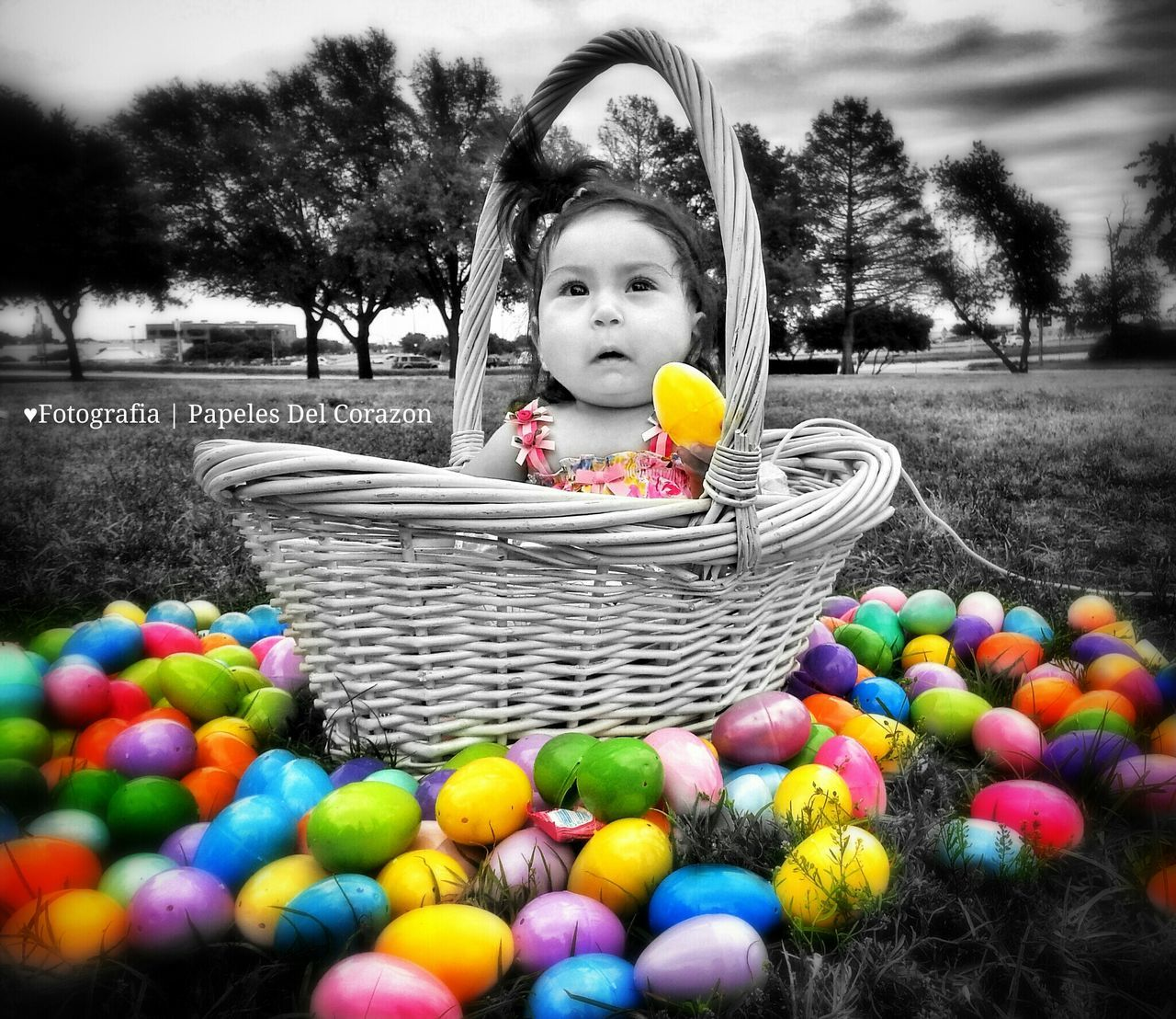basket, childhood, real people, tree, outdoors, girls, one person, leisure activity, looking at camera, elementary age, day, portrait, lifestyles, cute, grass, sky