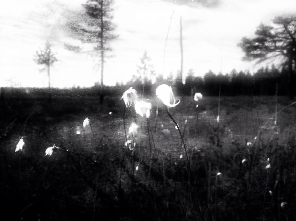The mire Don't Be Square Blackandwhite Days In July Heartbeat Moments