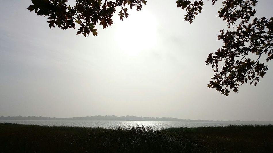 Nofilter Lake View Autumn Fernweh