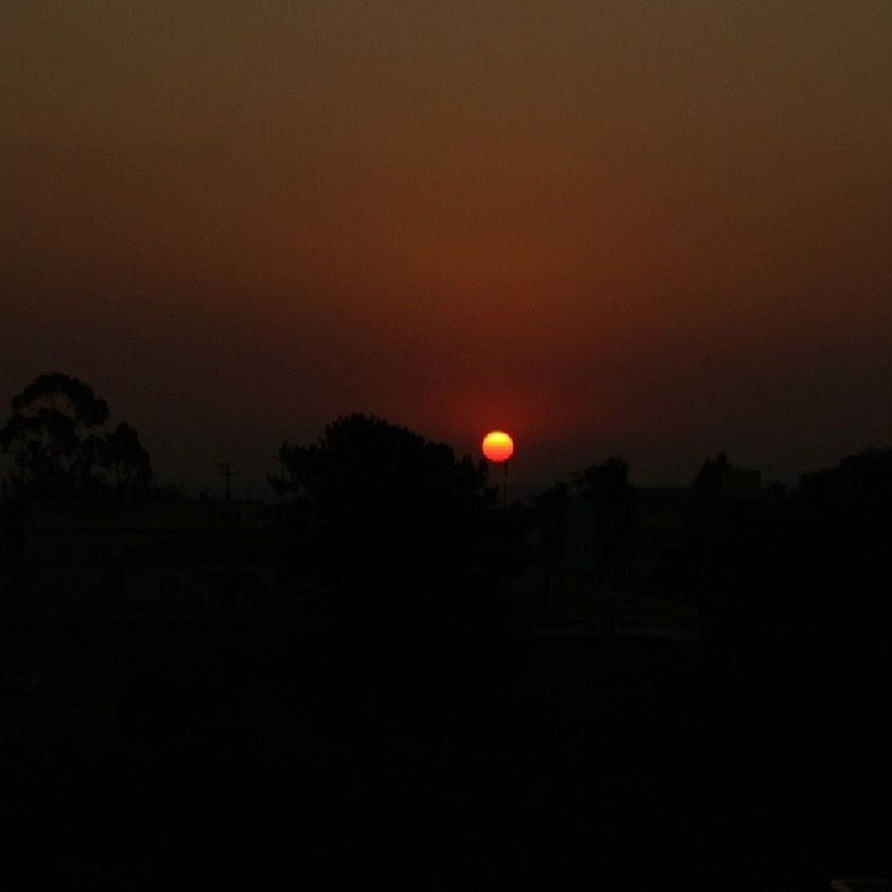 sunset, silhouette, tranquil scene, moon, scenics, no people, nature, tranquility, tree, night, outdoors, beauty in nature, landscape, sky, astronomy
