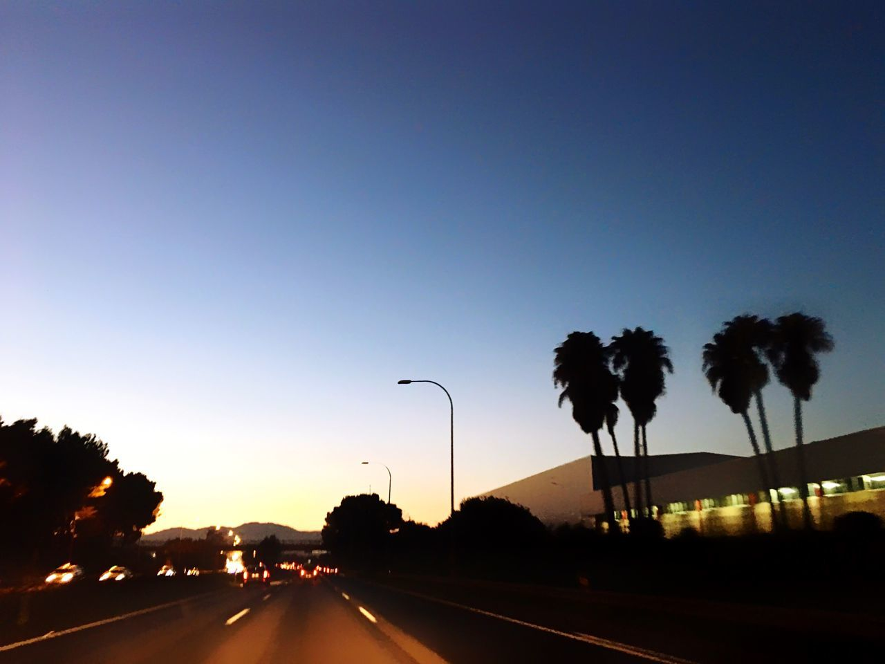 Blue Hour in Palma Road Tree Clear Sky Transportation Street Silhouette The Way Forward Car No People Highway Nature Sunset Outdoors Road Sign Day Palm Tree Palm Trees Mallorca Palma De Mallorca Freedom California Dreaming