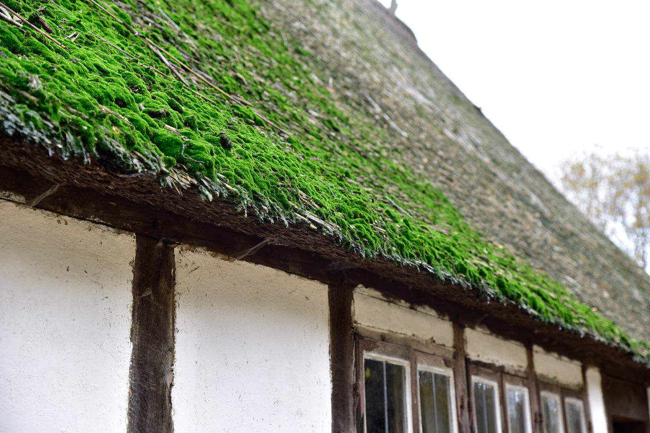 Altes Bauernhaus bei Hamburg Bauernhaus Close-up Eye4photography  EyeEm Best Shots EyeEm Gallery Focus On Foreground No People Open Edit