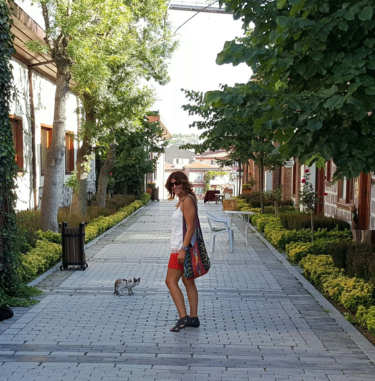 Cats Ankara Mypic That's Me! Walking Catslover Lovely Atmosphere