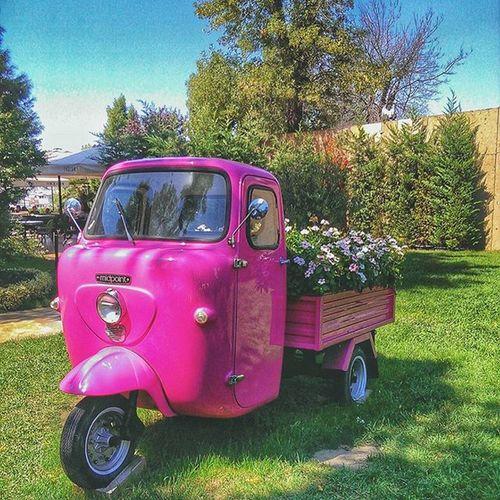 Pink Colorfulday Pinkeralla Lovely lovelyday cute sundayfunday sundayfun mutlupazarlar keskebenimolsa istanbullovers istanbulda1yer