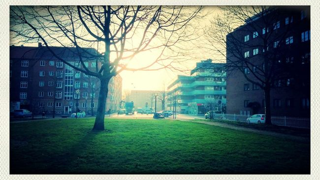 Early Spring Amazing Sun Light