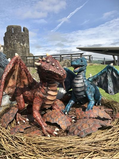 Caerphilly Castle, Baby Dragon Dragon Wales Wales UK
