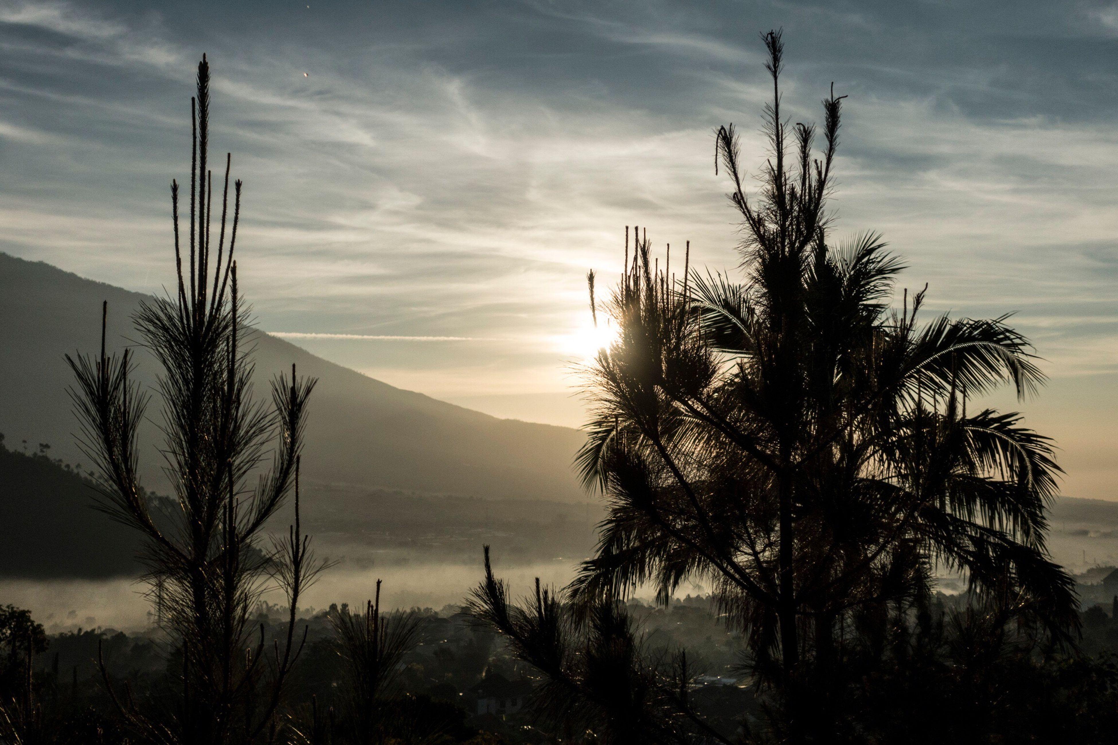 tranquil scene, tranquility, sky, scenics, mountain, beauty in nature, sunset, silhouette, nature, cloud - sky, mountain range, tree, landscape, cloud, sun, idyllic, growth, non-urban scene, plant, outdoors