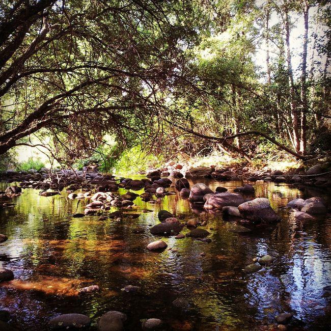 Taking Photos Paisaje River Riverscape Landscape Landscape_Collection River Arenal
