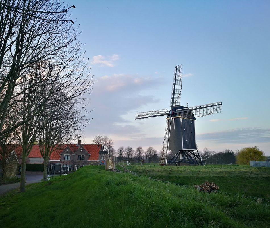 No People Architecture Nature Outdoors Windmill Farmland Dutch Dutch Landscape Dutch Windmill Dutch Countyside Dutch Landscapes