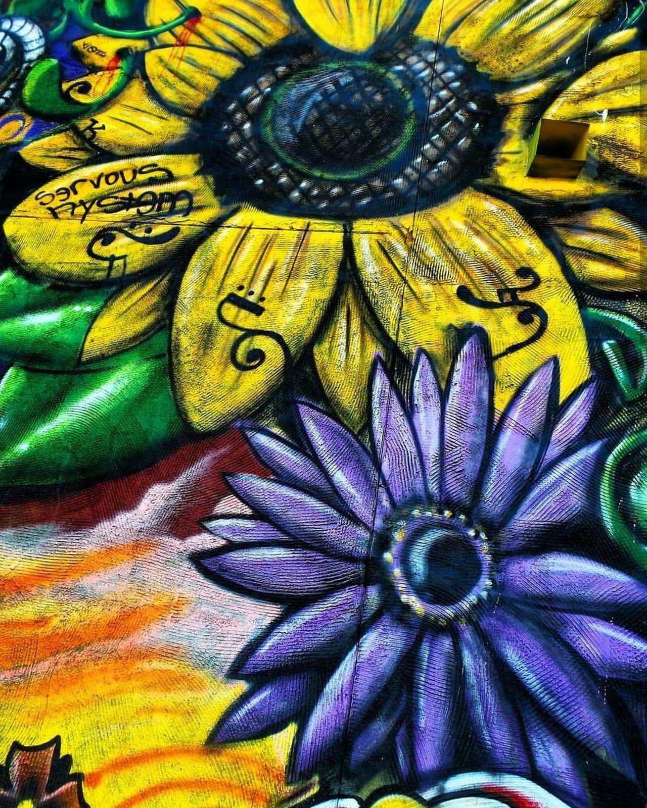 Multi Colored Creativity Close-up ArtWork Graffiti Streetart/graffiti Streetphotography Building Exterior Texture Pattern Mural Flower Premium Collection EyeEm Vision EyeEm Best Shots BestEyeemShots BestofEyeEm EyeEmBestEdits