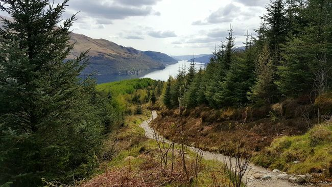 Walks on the way up The Cobbler and saw this Amazing View of Loch Long! Mountains And Valleys Woods And Water Naturelovers Nature At Its Finest Nature Freak Scotlandlover Scotland Still Water Amazingview