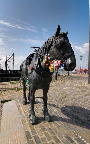 Docks Statue Bronze Statue Horse Horse Stutue Bronze Horse Pit Pony Merseyside Maritime Museum Maritime Albert Dock Liverpool Merseyside Albert Docks Liverpool, England Liverpool Docks Pier Head Liverpool Mersey
