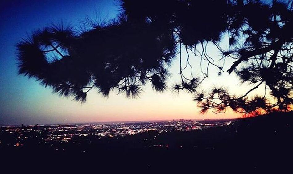 Sunset Losangeles USA Unitedstates Trip Holiday View Sky ExploreUSA ExploreLA Tramonto Instatravel Instagram Vacanza Panorama Grattacieli Citta City Cityview California Emotions Colors Beautiful Amazing Cities At Night