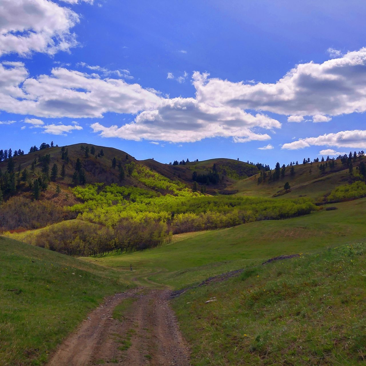 BigSkyCountry Scenic Views Vscocam Naturelovers Mountains Mountains And Sky Vistas