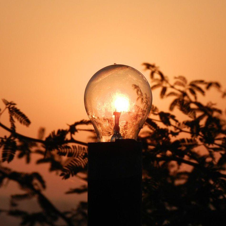 Off yet on.. Sun in the background Lovesun Sun Kutch Rudramata Sunrise Bulb Resort Nikon Nofiltering Leaves Photooftheday