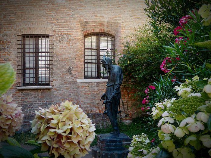 Mantova Rigoletto Old House Flowers The 2016 EyeEm Awards