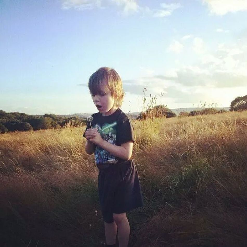 Graves Park, Sheffield Summers Evening Meadow Dandilion  Dandelion Flowers Three Quarter Length Child Childhood Blond Hair One Person Nature Sky Outdoors Grass Day Phone Photography