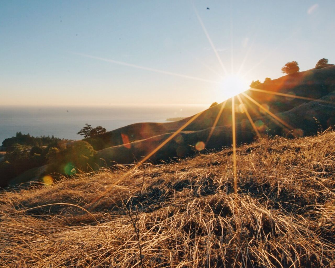 Beautiful stock photos of california, , Horizontal Image, agriculture, atmosphere