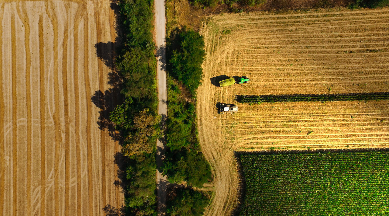 Aerial View Agriculture Architecture Beauty In Nature Combine Harvester Day Drone  Farm Field Green Color Growth Land Vehicle Landscape Nature Outdoors Real People Rural Scene Scenics Tractor Tranquility Flying High
